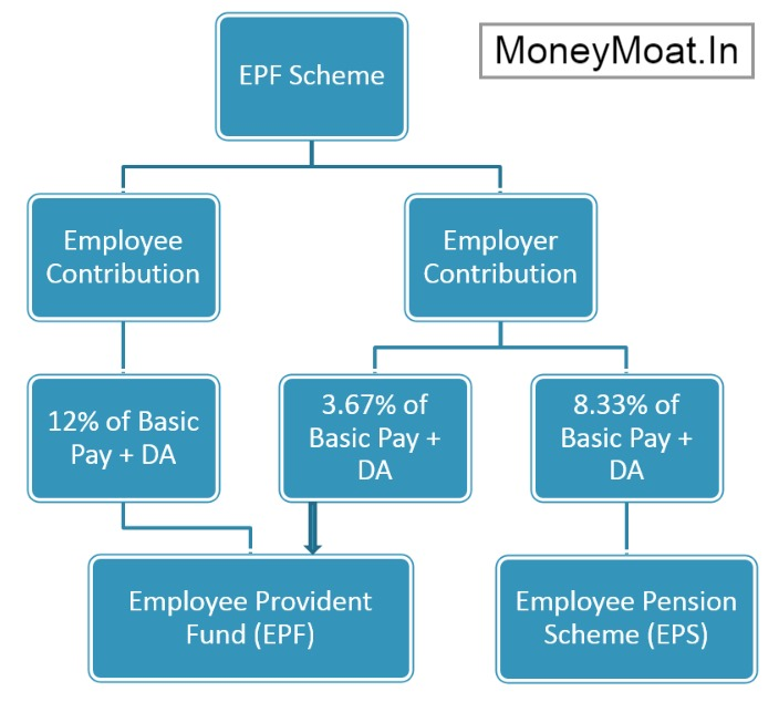 epf contribution of employee and employer